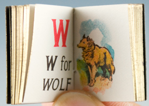 My Tiny Alphabet Book.