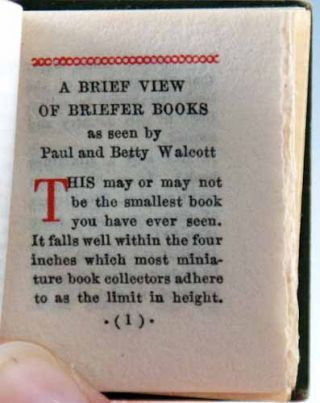 Chats About Miniature Books.