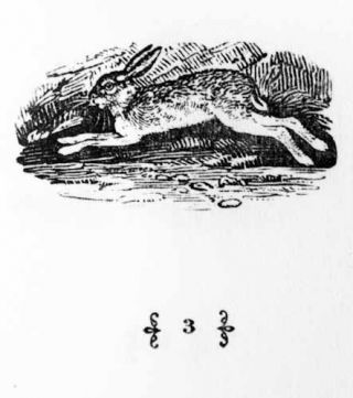 Thomas Bewick, Vignettes from Birds, Quadrupeds and Fables. Norman W. Forgue.