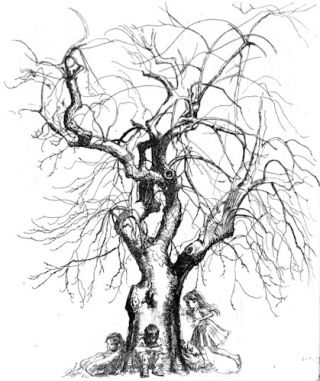 26 Etchings by Shelly Fink.