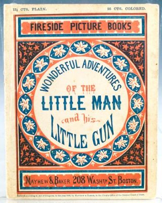 The Wonderful Adventures of the Little Man and His Little Gun