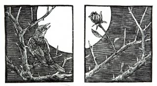 Woodcuts for the Nightingale and the Rose, published by the Rebecca Press.