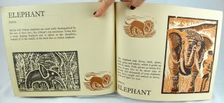 A Book of Animals.