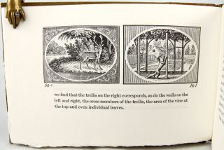 Thomas Bewick's Fables of Aesop and Others.